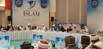 Reisu-l-ulema na zasjedanju 9. Euroazijskog islamskog vijeća u Istanbulu